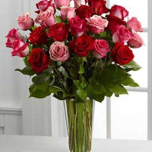 25 red pink roses speaks the language of love